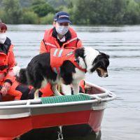BRH-Rettungshundestaffel_Bild-09