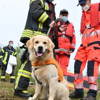 BRH-Rettungshundestaffel_Bild-10