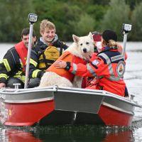 BRH-Rettungshundestaffel_Bild-17