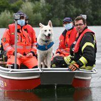 BRH-Rettungshundestaffel_Bild-26